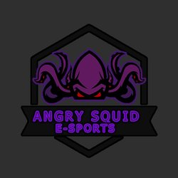 Angry Squid E-sports