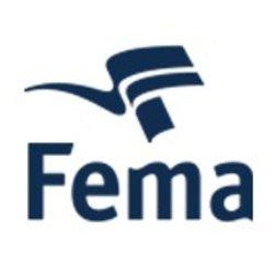 FEMA Gaming Division